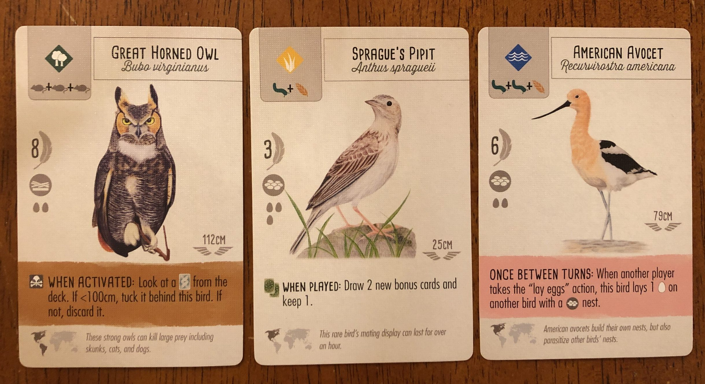 Three bird cards from Wingspan game